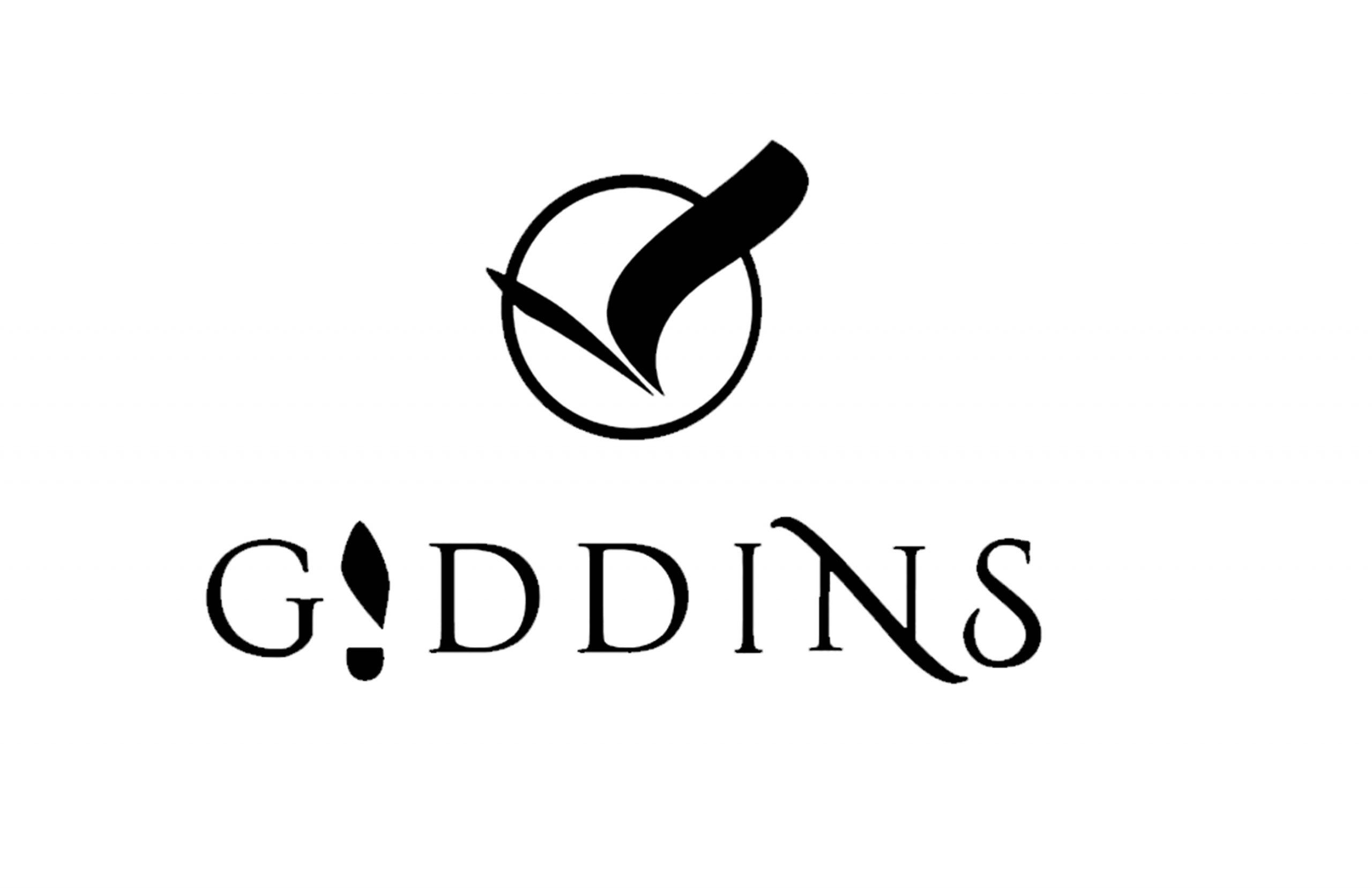 Innohub's Entrepreneur-Gideon Dendzo, Giddins Innove